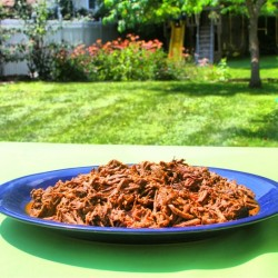 Paleo spirit barbacoa on platter
