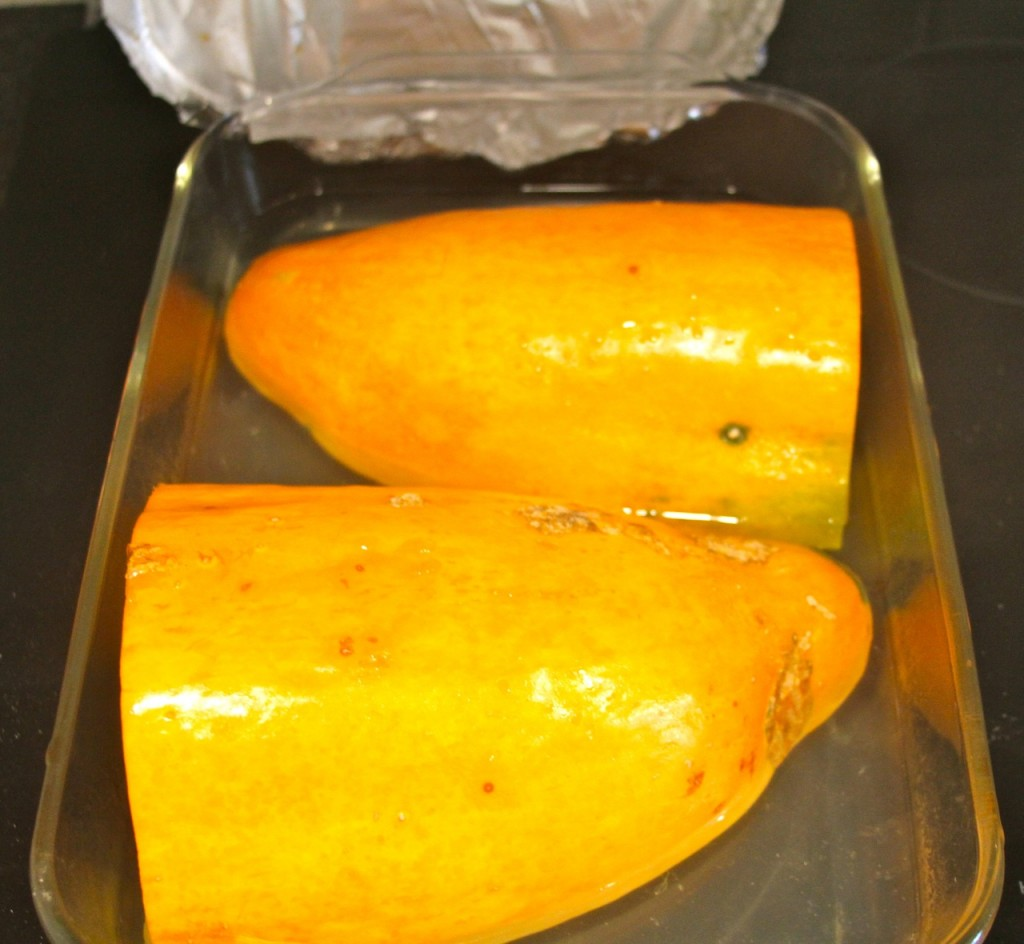 roasted banana squash