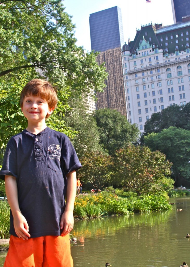 Central Park and the Plaza Hotel