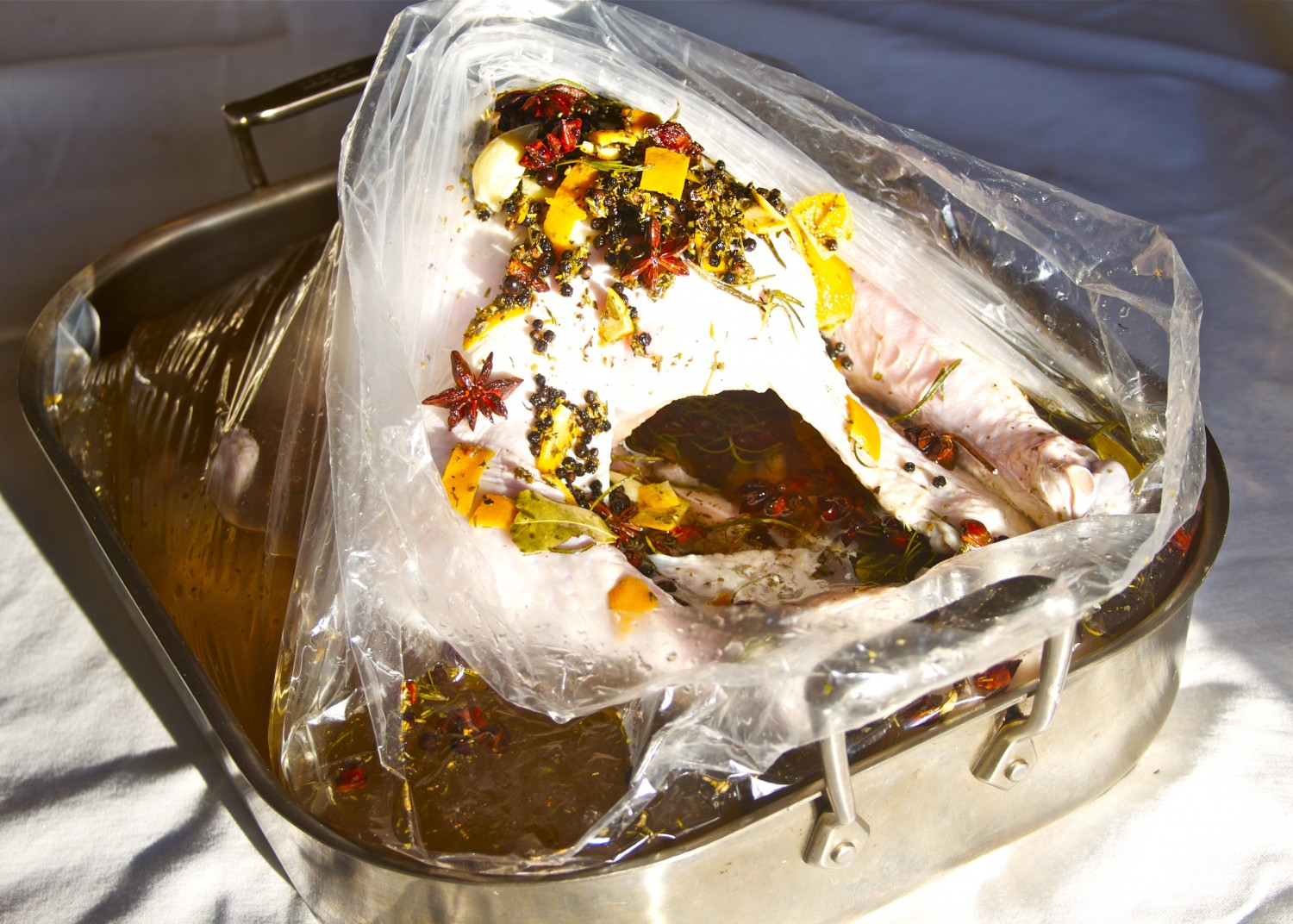 How to Brine a Turkey How to Brine a Turkey new pictures