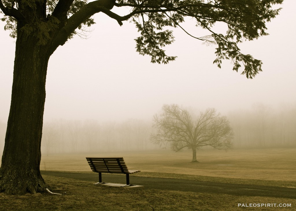 bench - paleospirit.com