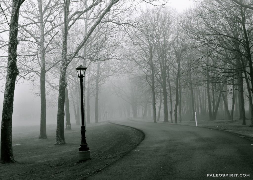 lamp and road - paleospirit.com
