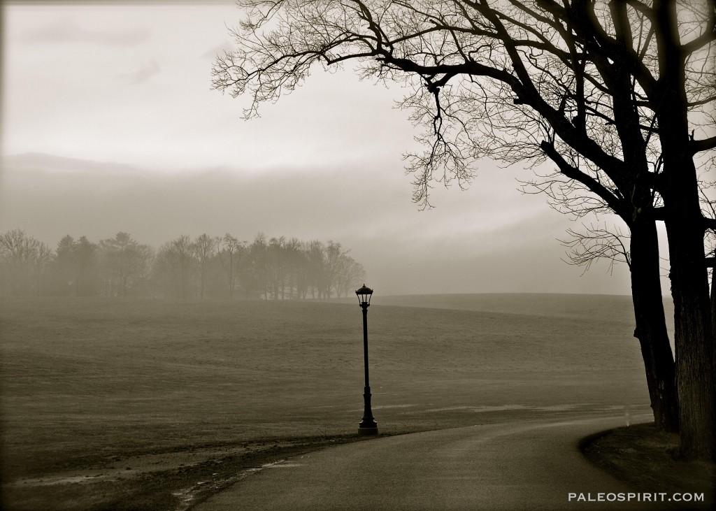 lamp and horizon - paleospirit.com