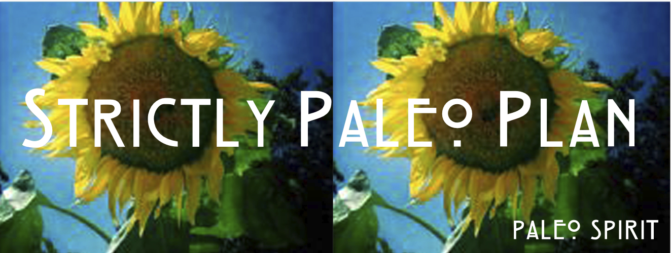 strictly paleo header 4