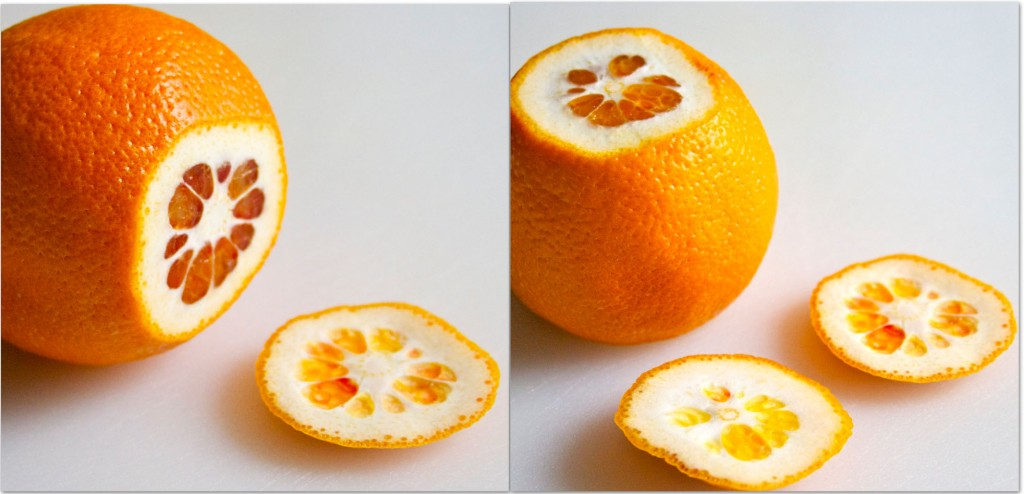 cut ends of orange