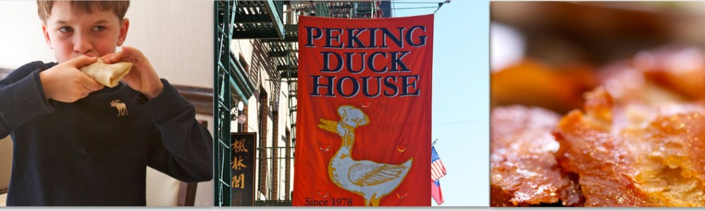 duck house header
