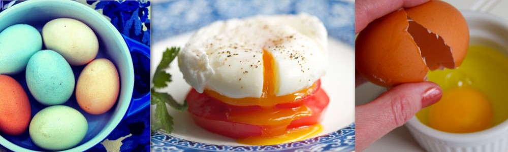 poached eggs header
