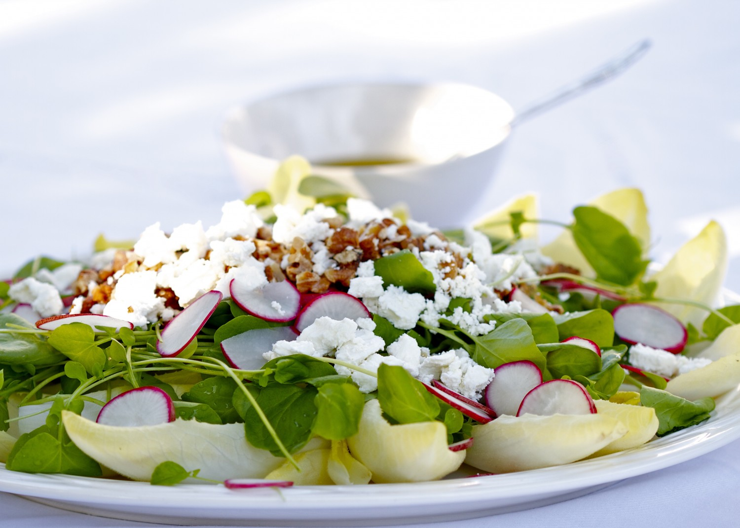 Endive, Watercress and Radish Salad With Walnuts and Goat Cheese