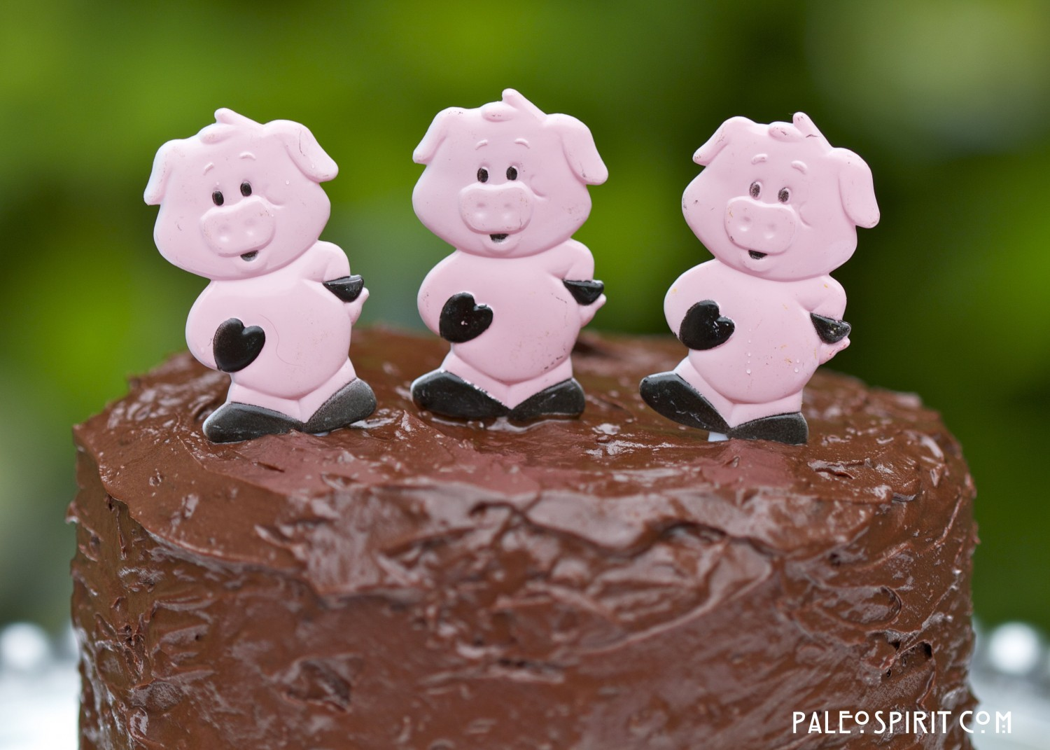 pigs on chocolate bacon cake