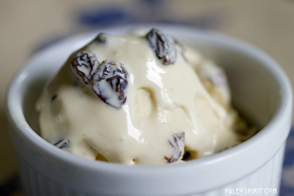 primal rum raisin ice cream