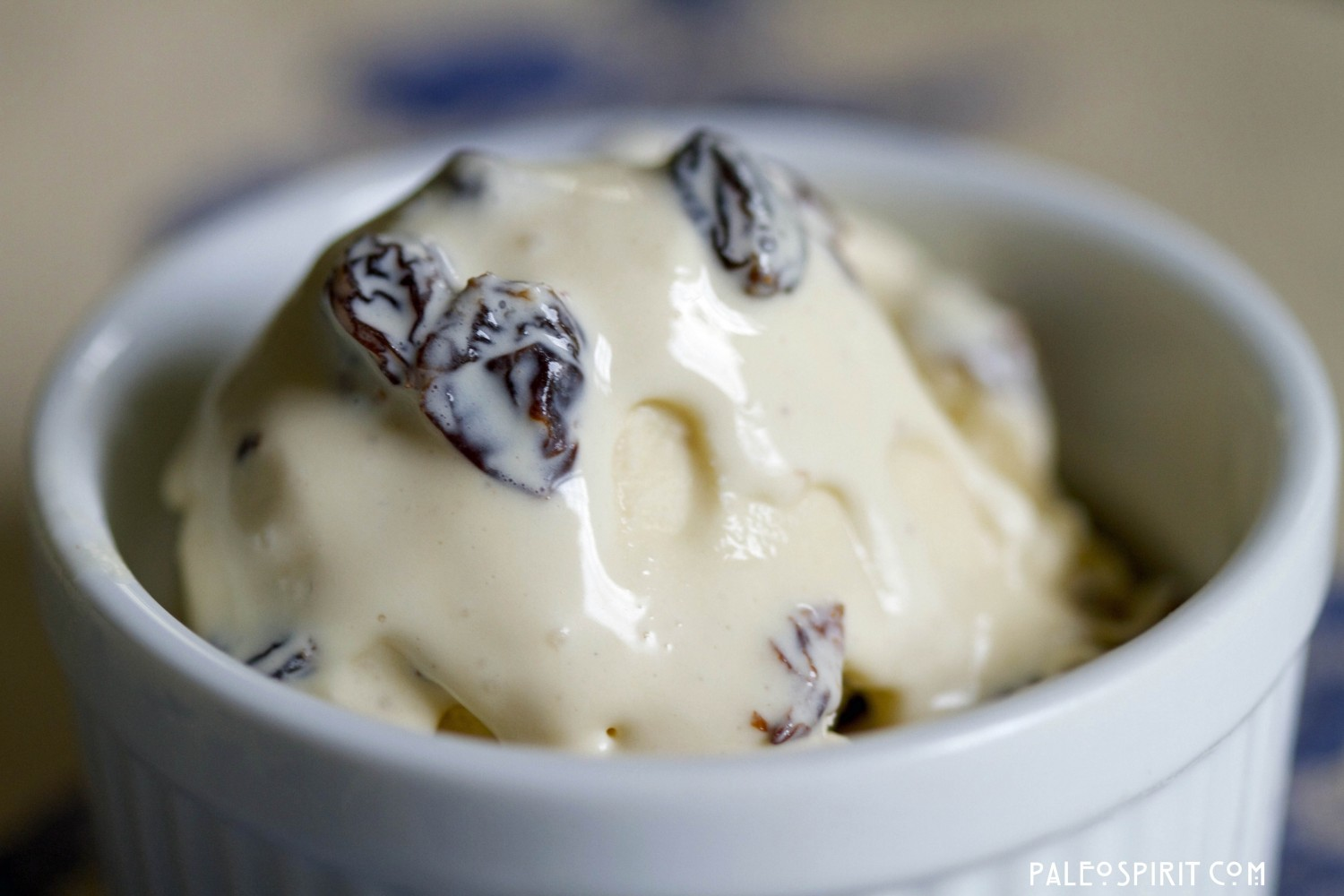 Rum Raisin Ice Cream (Primal)
