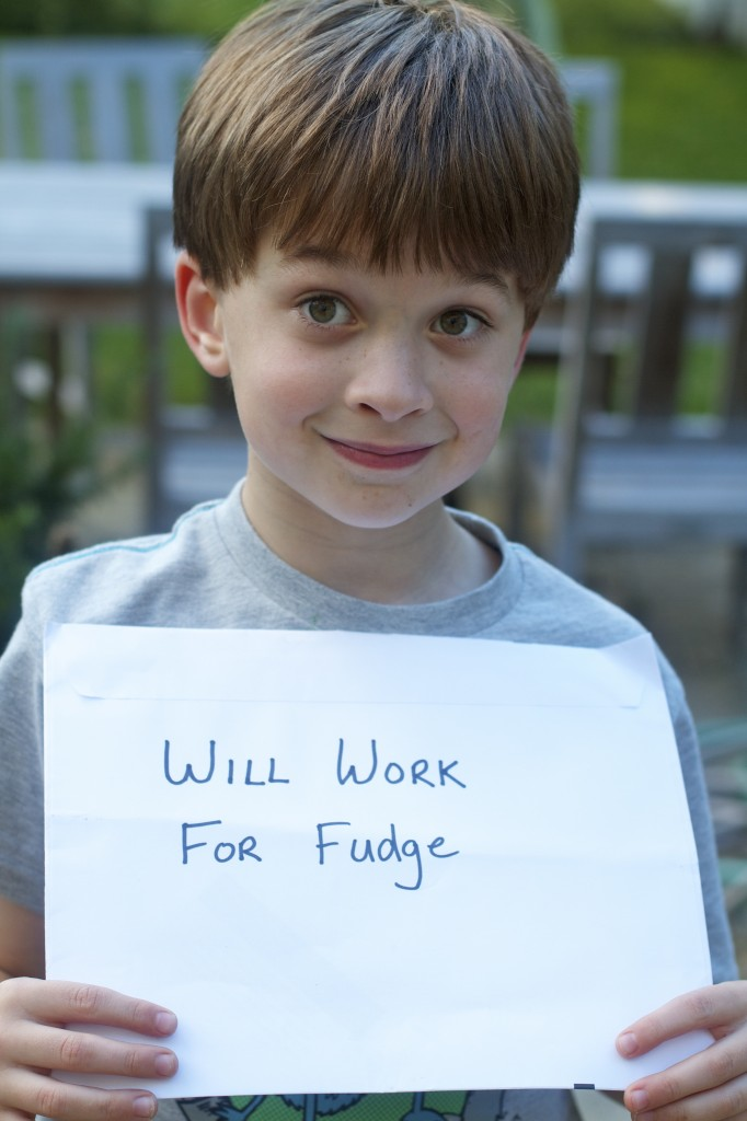 will work for fudge