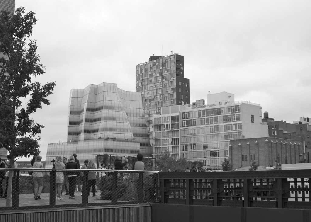 Buildings from The High Line: PaleoSpirit.com