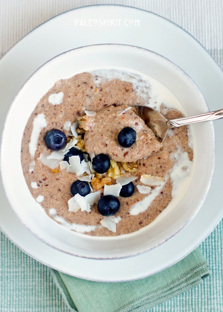 Paleo Breakfast Porridge