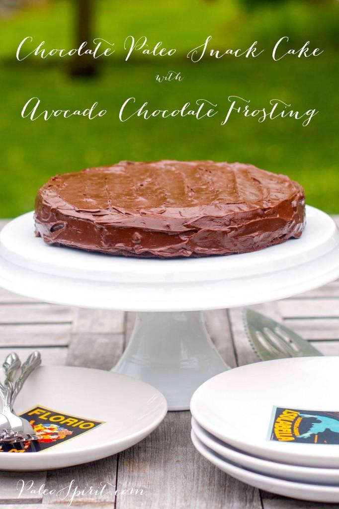 Paleo Avocado Chocolate Frosting