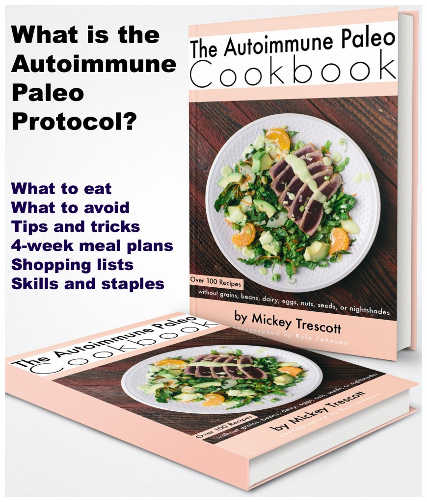 What is the Autoimmune Paleo Protocol?