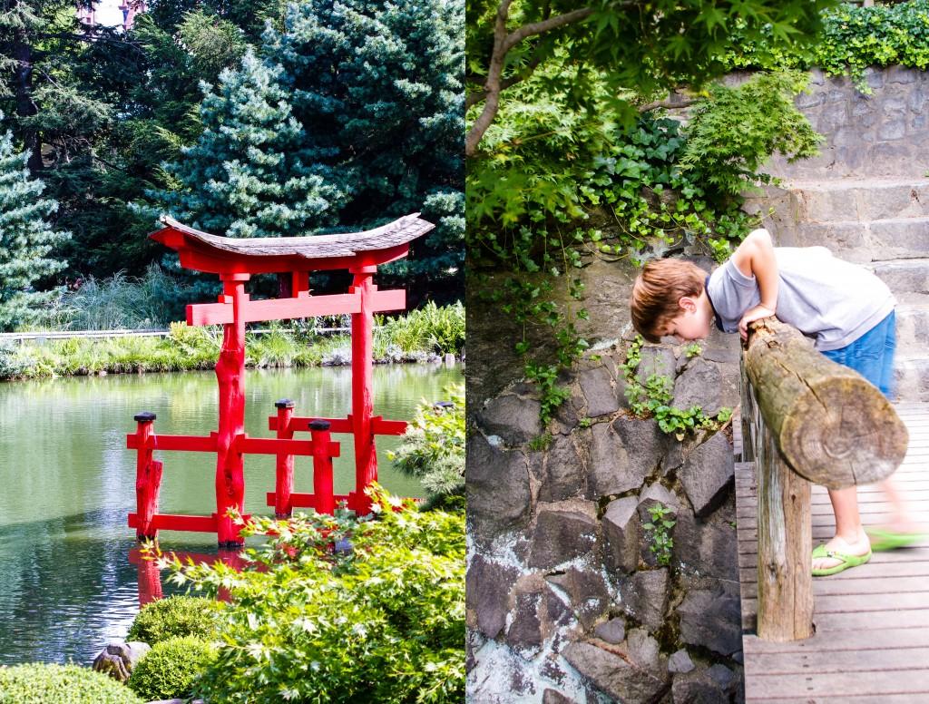 Asian garden double #2