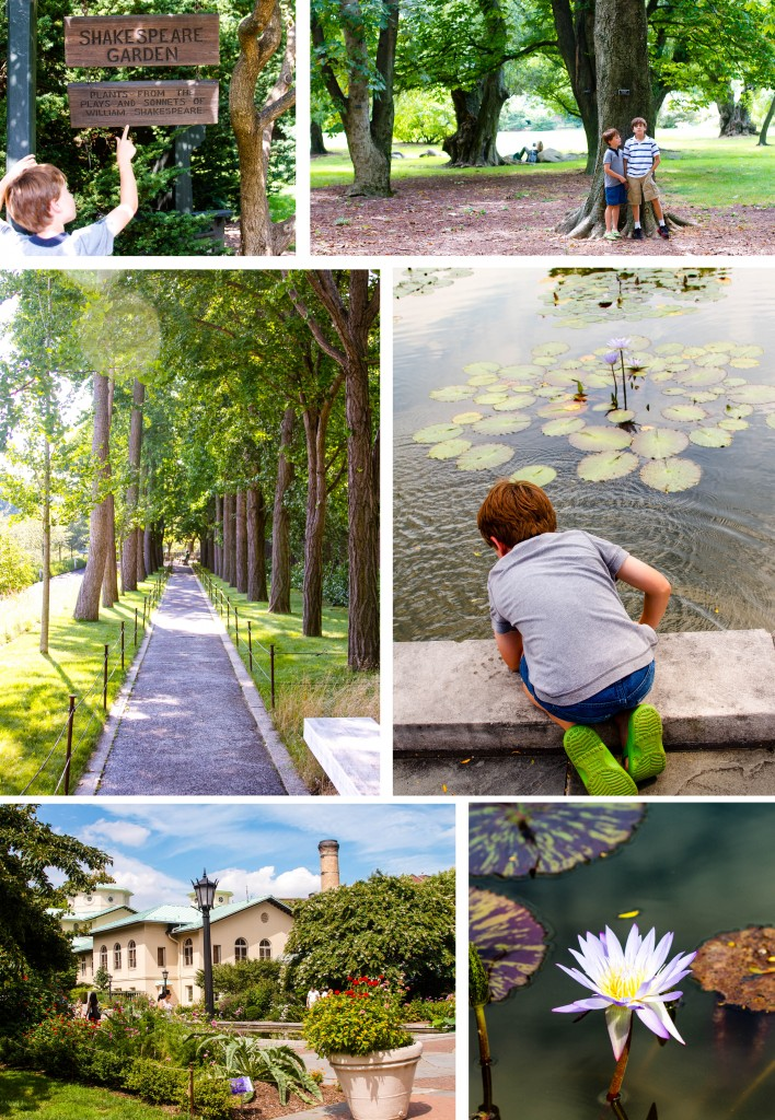 Botanic Garden Collage #1