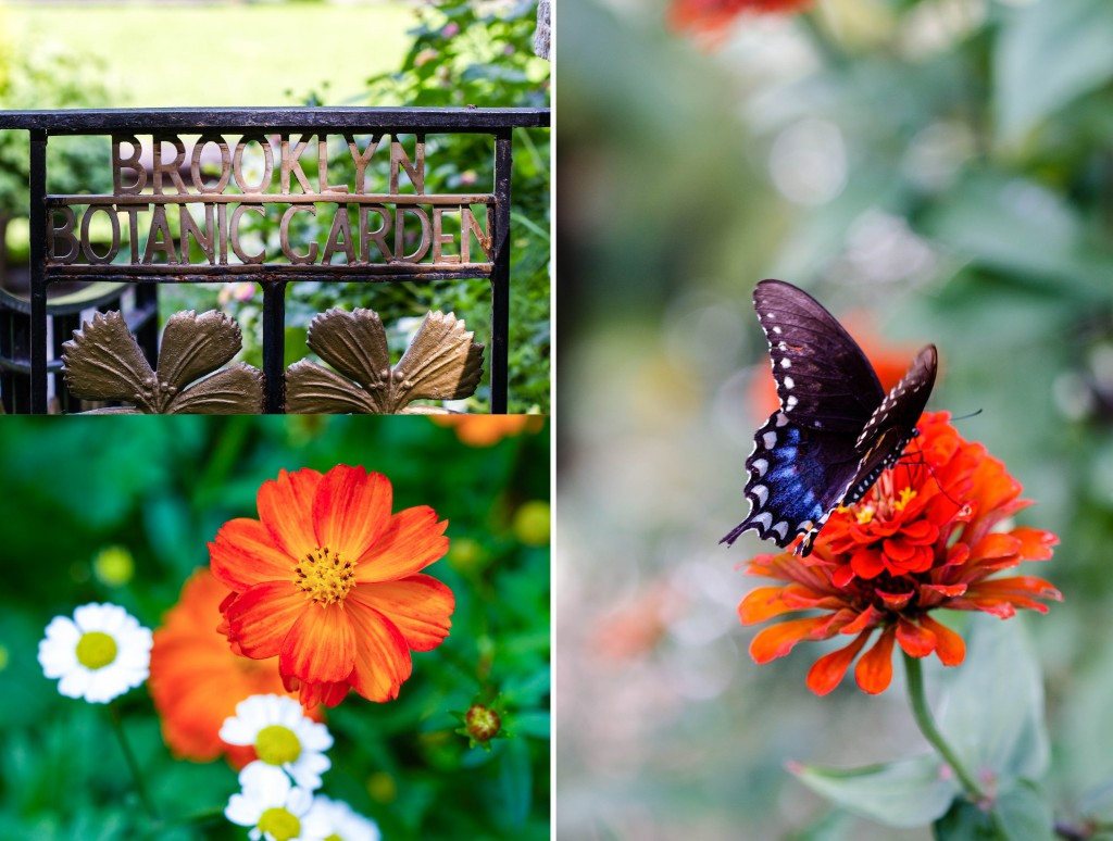 Botanic Garden triple sign #2