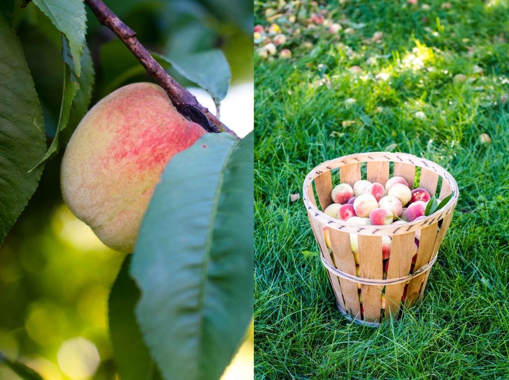 double peaches final