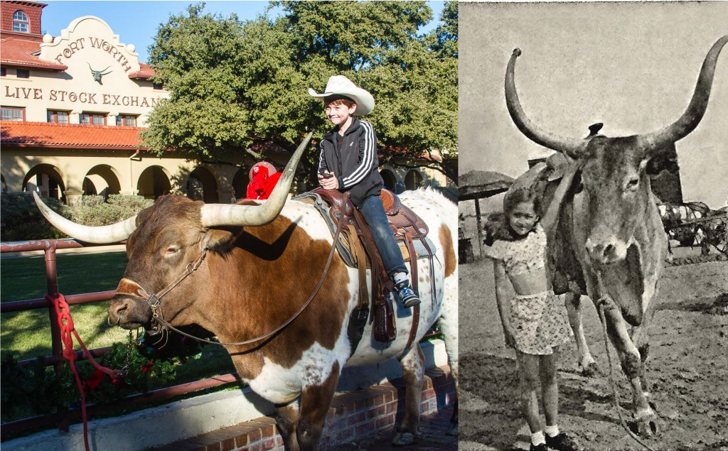 LR Nat and Nonna with longhorn