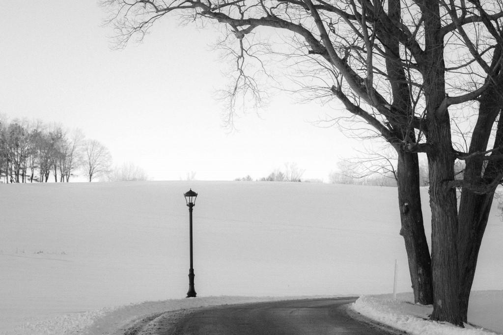 Lightpost: by Lea Valle