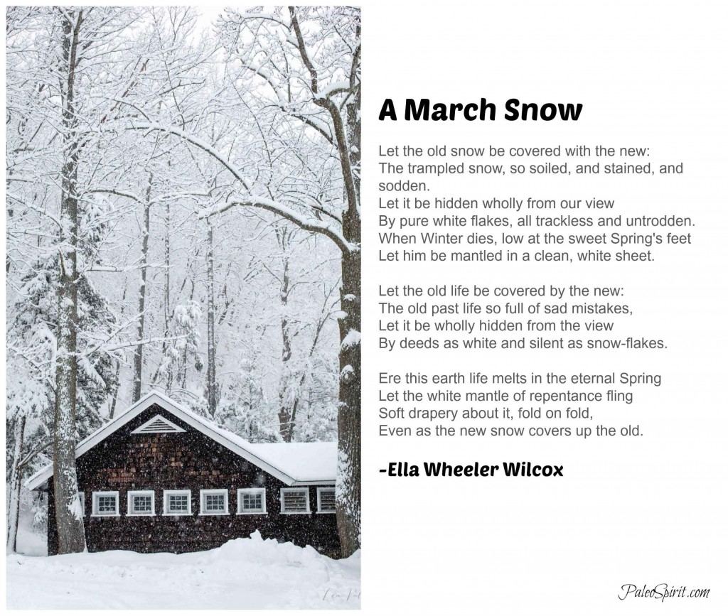 A March Snow Poem with Photo