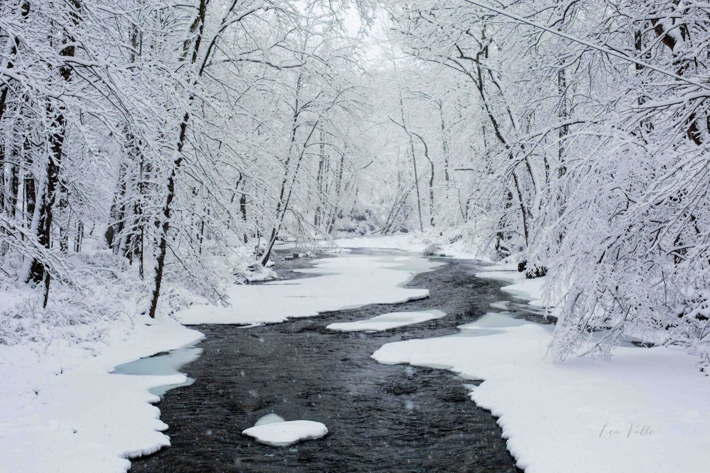 Snowy River | Photo by Lea Valle